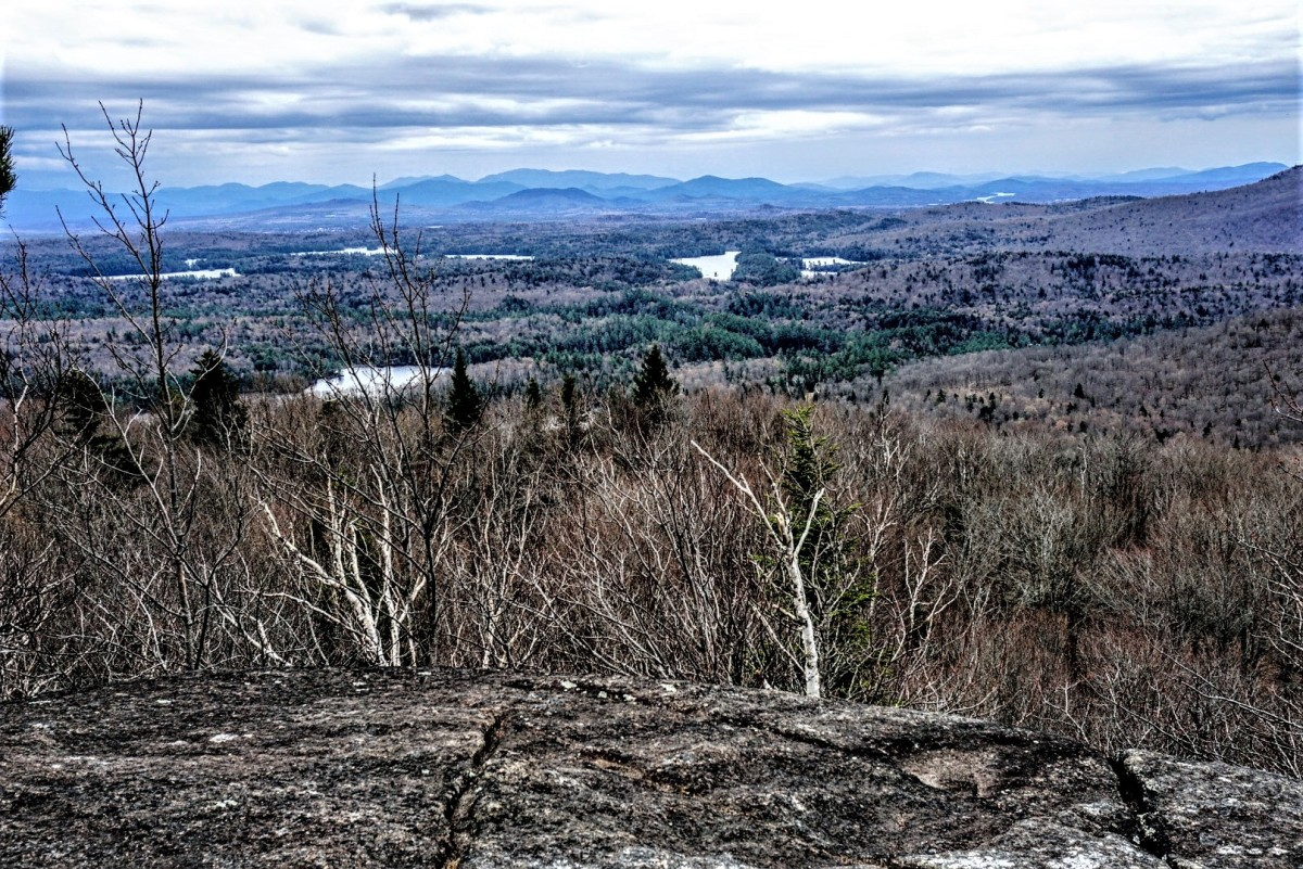 Jenkins Mountain